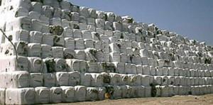 """Coda di Volpe, ancora 7mila tonnellate di """"ecoballe"""" da smaltire"""